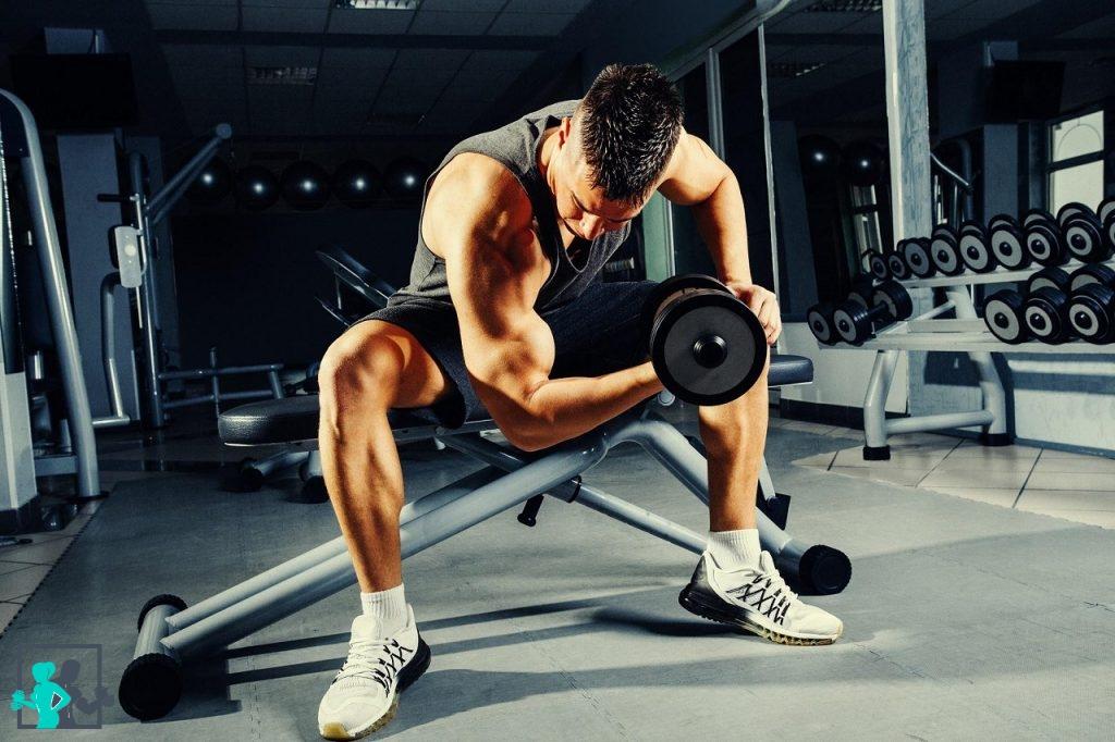 Les 8 meilleurs exercices de musculation pour les biceps