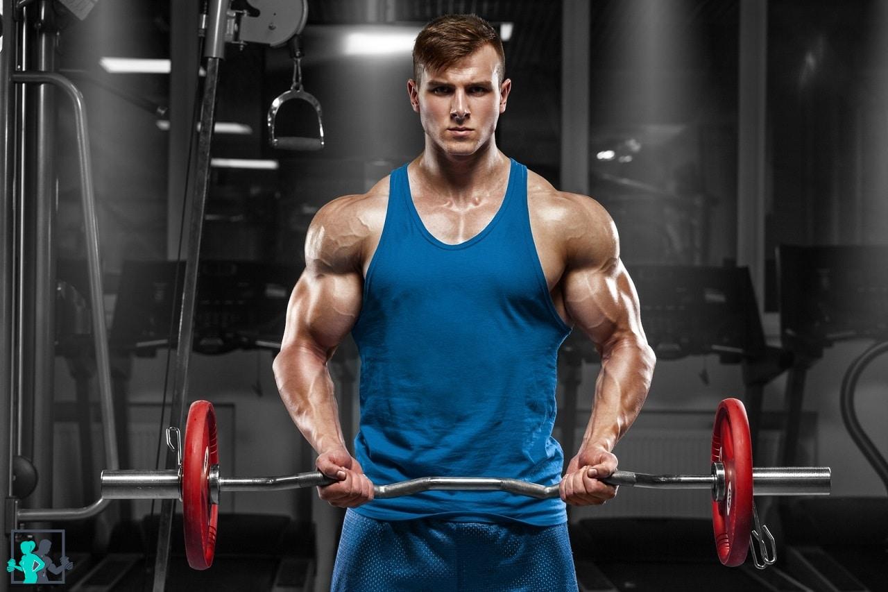 meilleurs exercices de musculation pour les pectoraux