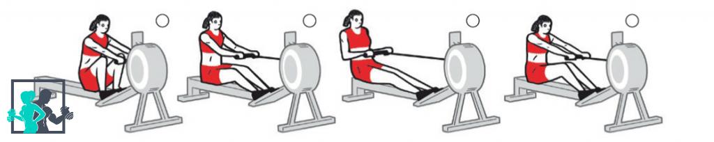 Exercice rameur