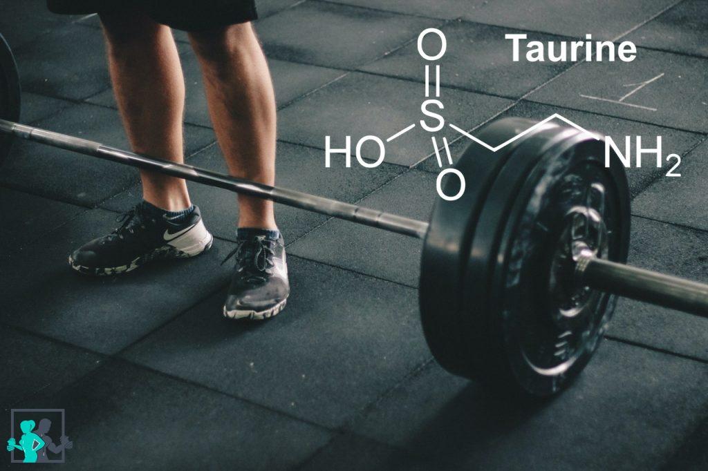 Taurine et musculation-2