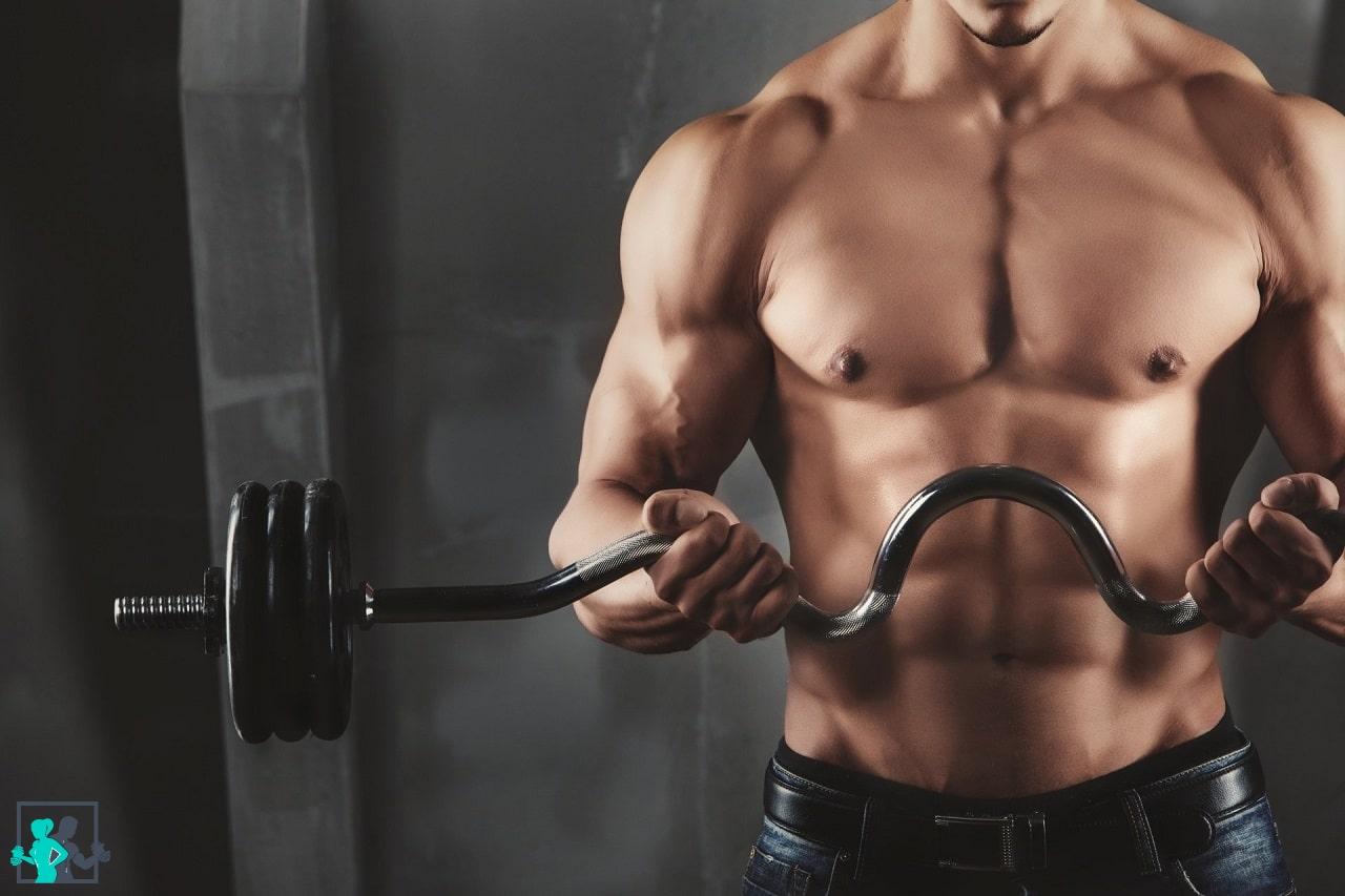 Muscler le torse