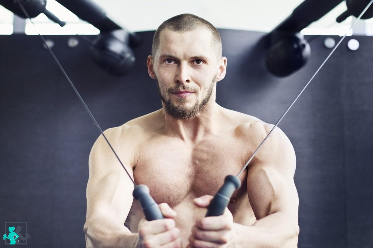 Musculation du torse