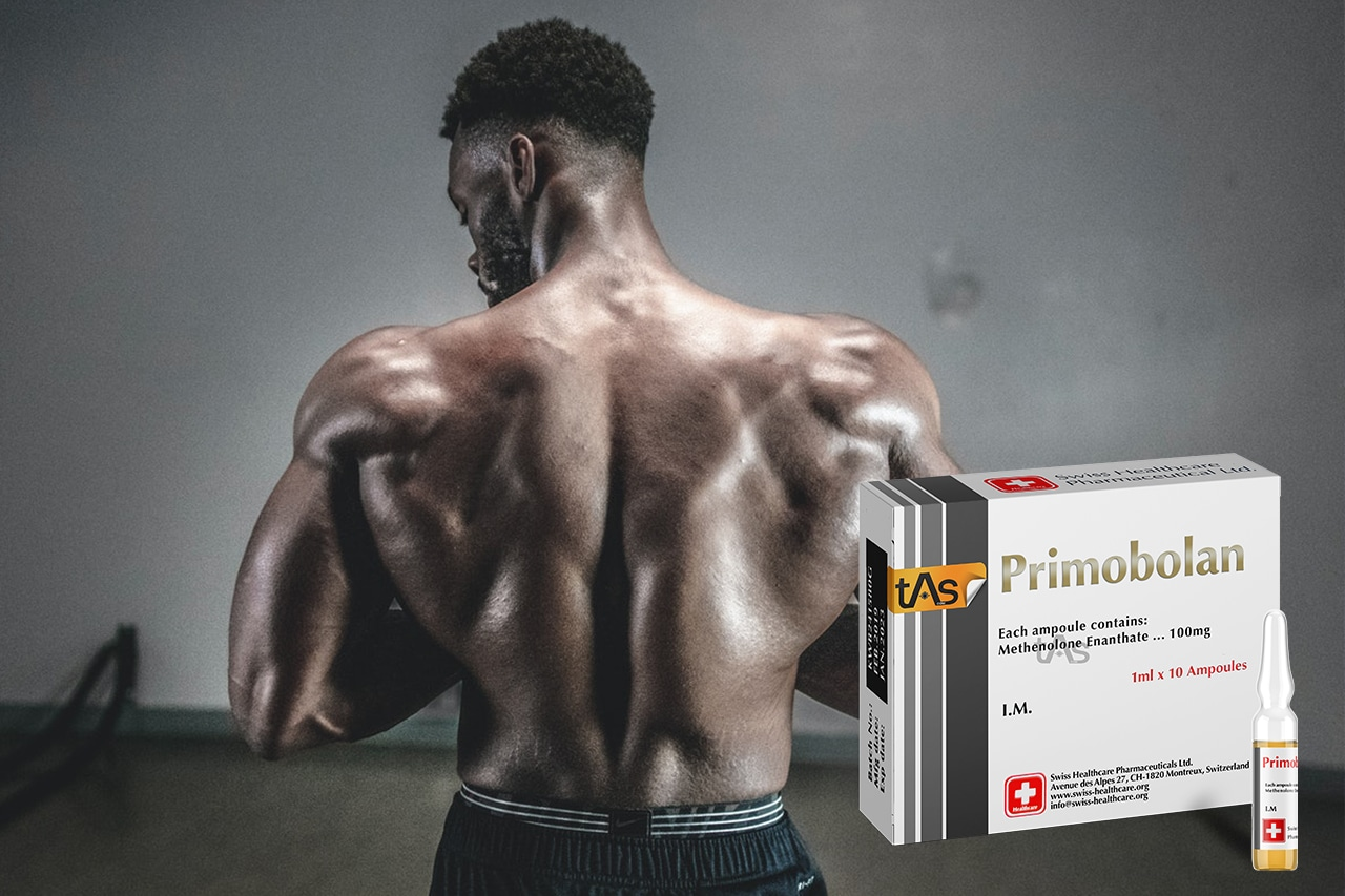 Tout savoir sur Primobolan