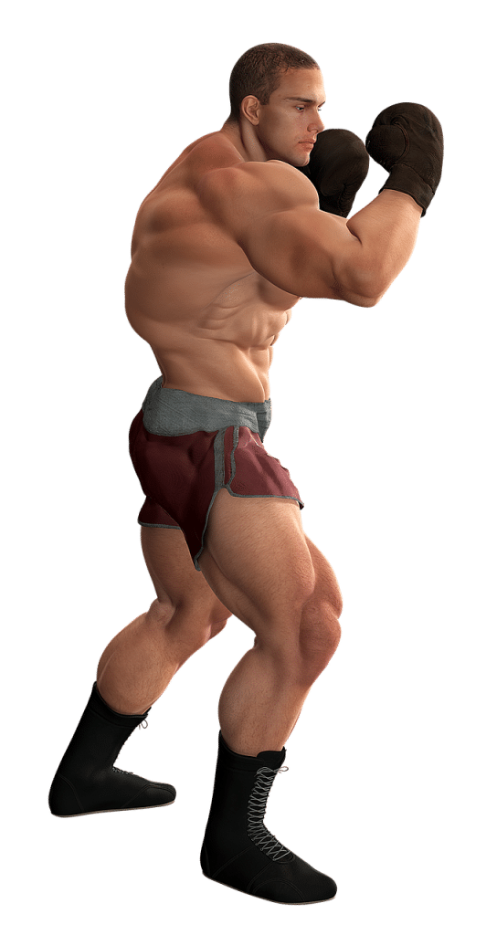 muscles saillants